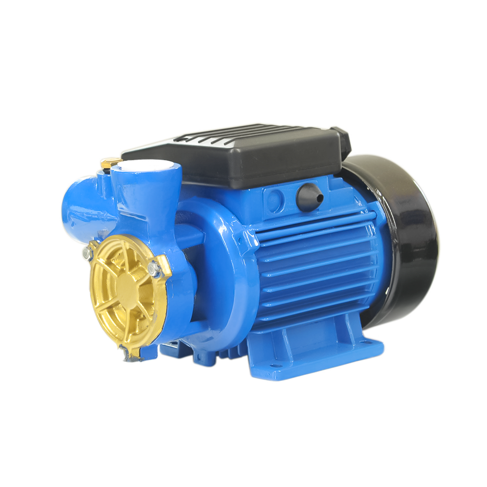 Series electric clean water pump DB-125