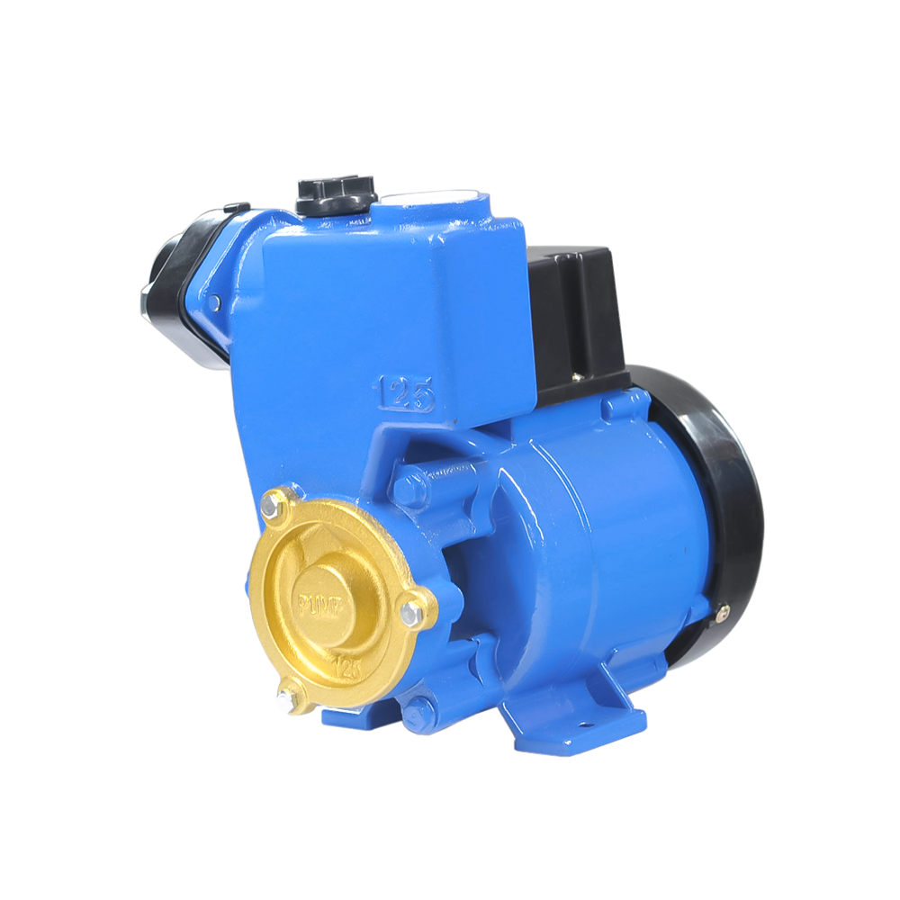 Series electric clean water pump GP-125A