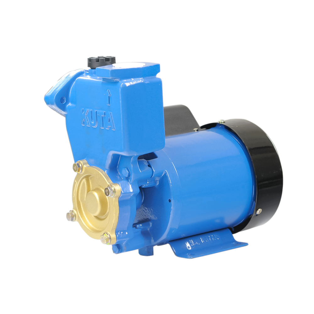 Series electric clean water pump PS-126