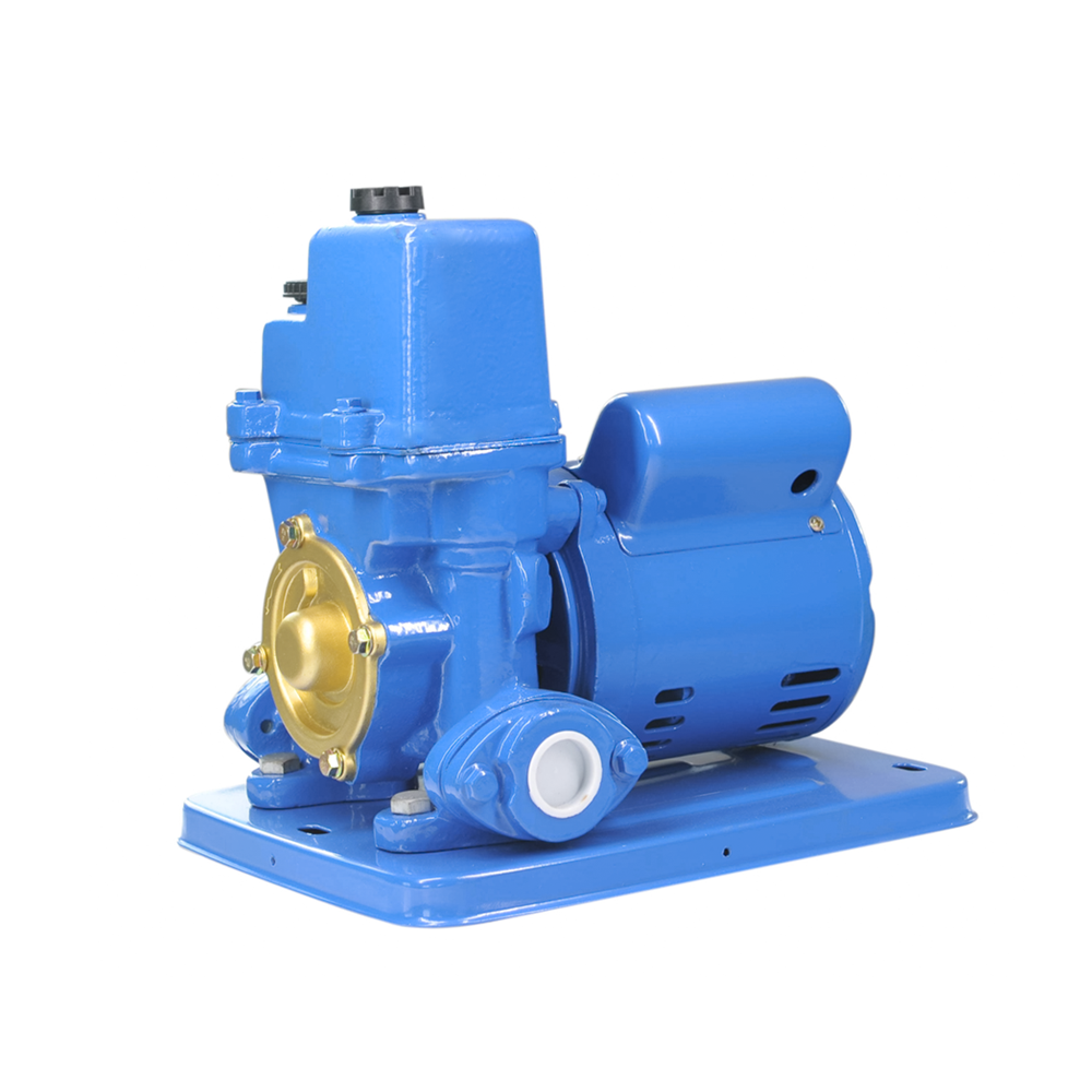 Series electric clean water pump PW-250E