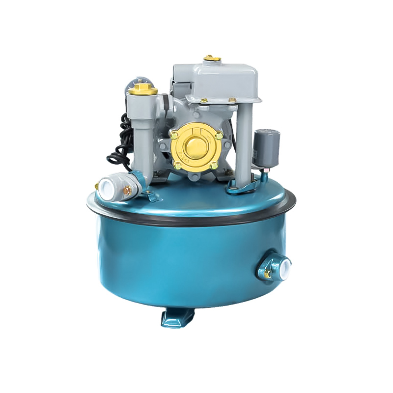 Automatic water pump features